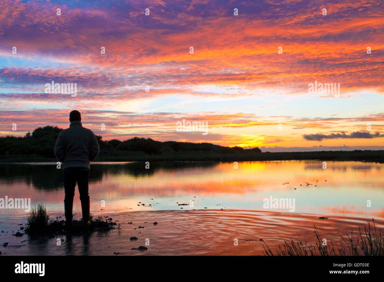 UK Weather:  Sunrise, Southport, Merseyside, UK. 21-Jul-16.  A man watches the rising sun over the wetlands of Southport's - Stock Image