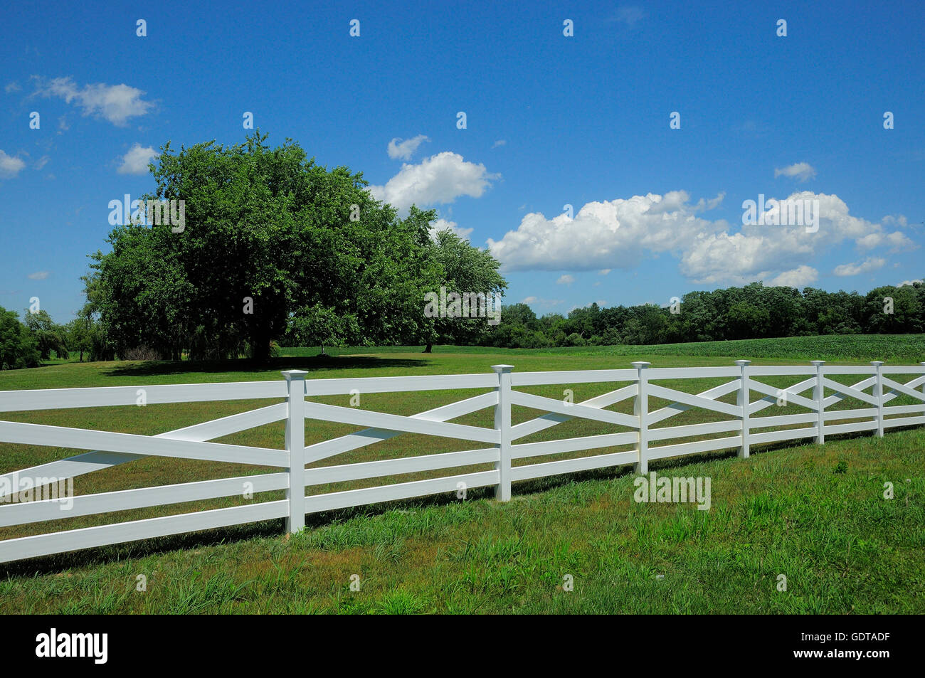 New fence line along pasture. - Stock Image