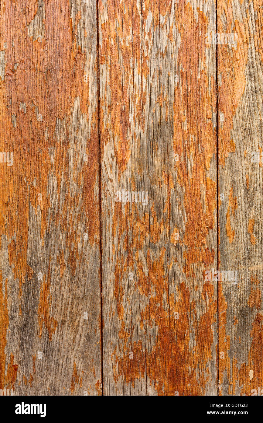 Wood background, old planks painted. - Stock Image