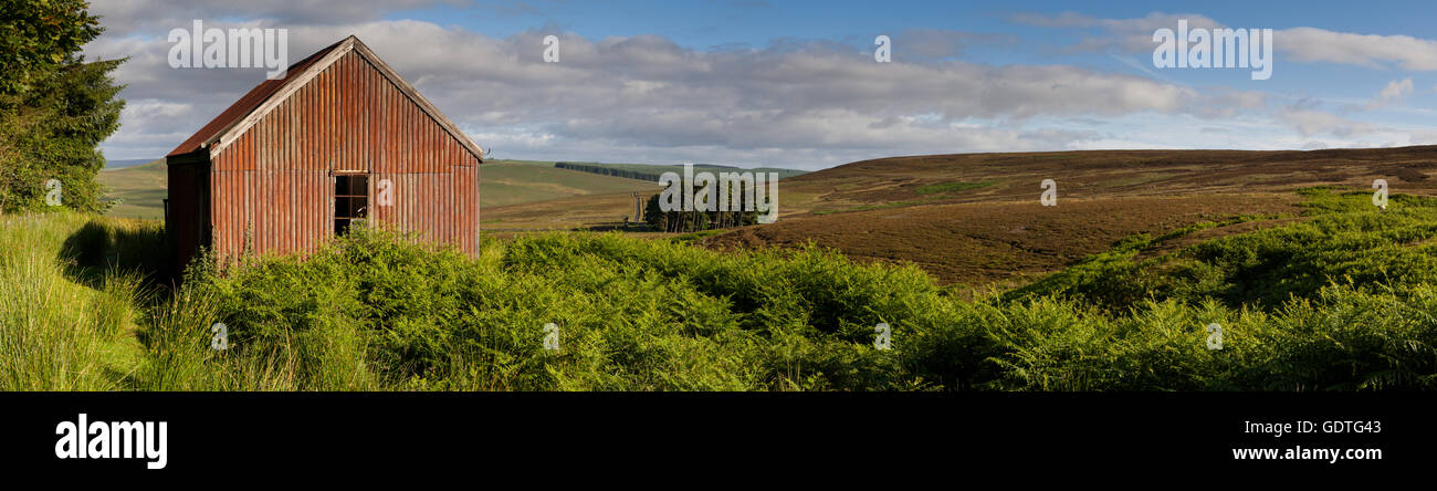 Abandoned corrugated iron shed in the Northumberland moors in summer time, panoramic view. - Stock Image