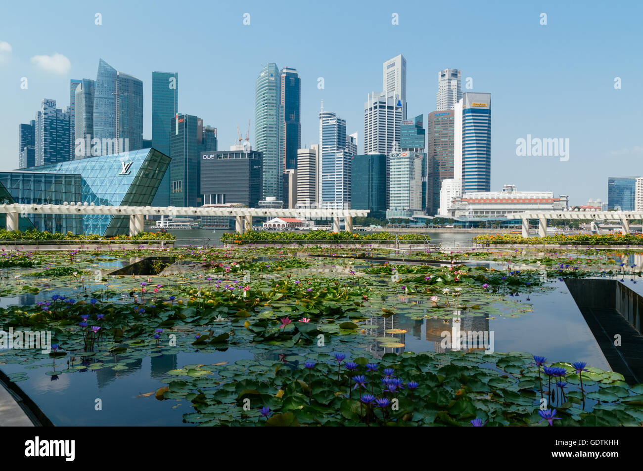 Singapore, Singapore - February 10, 2014: Singapore Central Business district skyline view with a  blooming lily - Stock Image