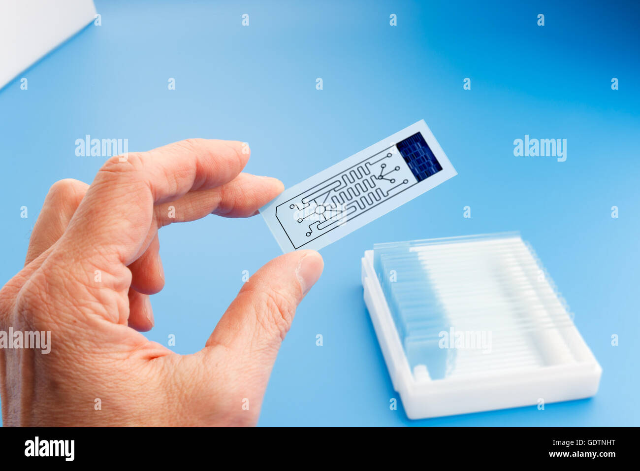 biochip for identifying proteins, Lab on Chip - systems all process for analysis of a sample are integrated into - Stock Image