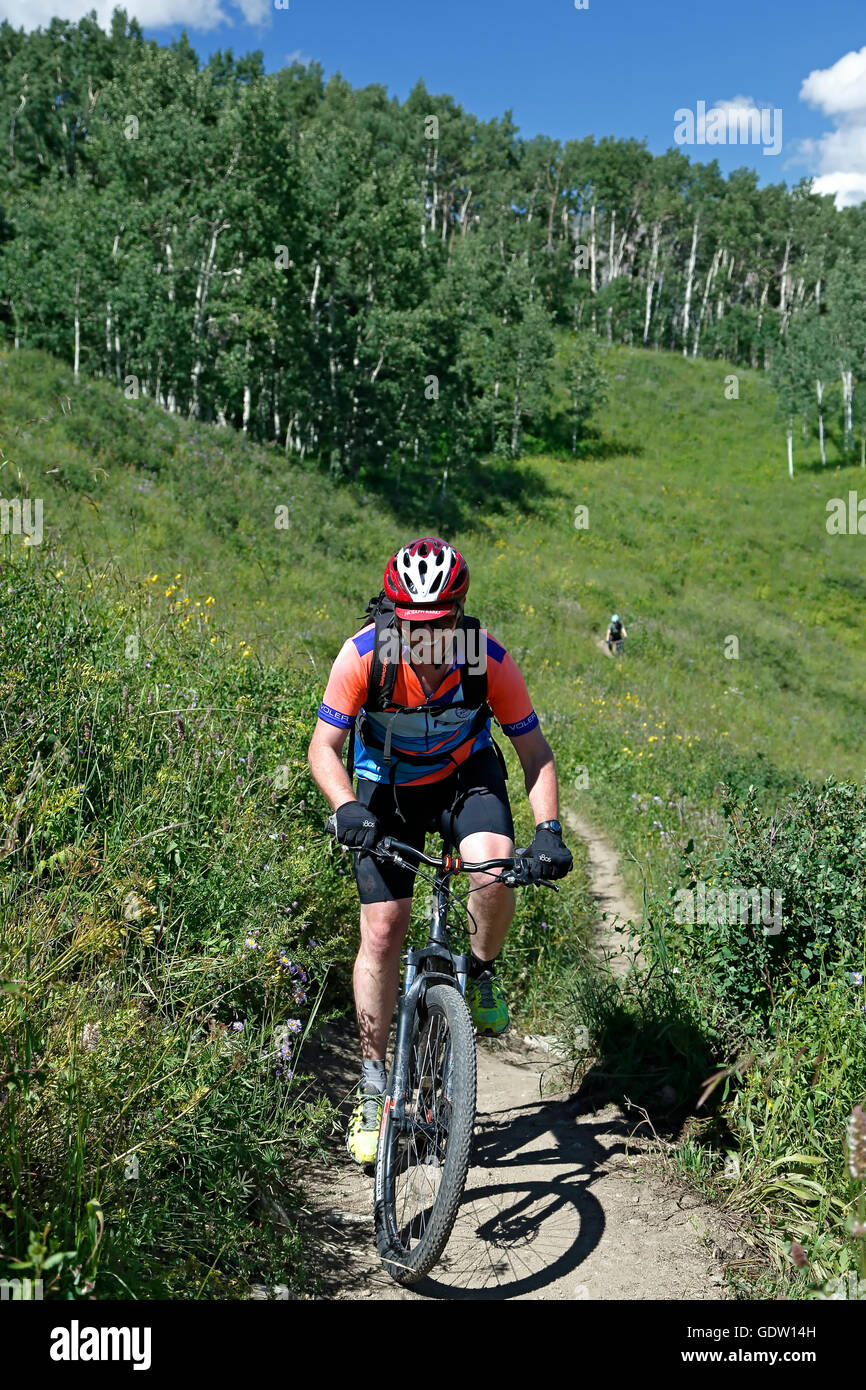 Mountain bikers on trail near Crested Butte, Colorado USA - Stock Image