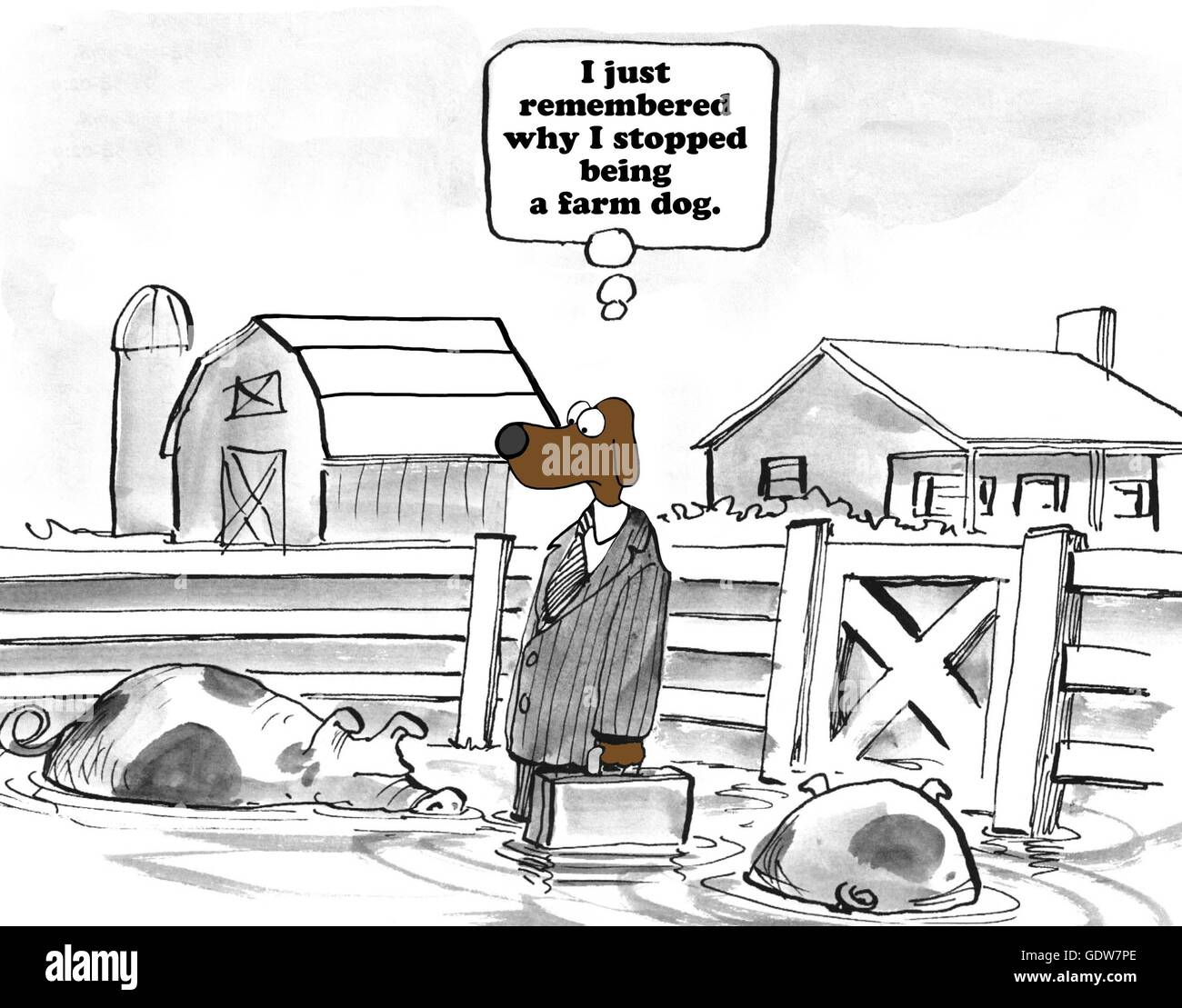 Cartoon About A Career Change Stock Photo Alamy