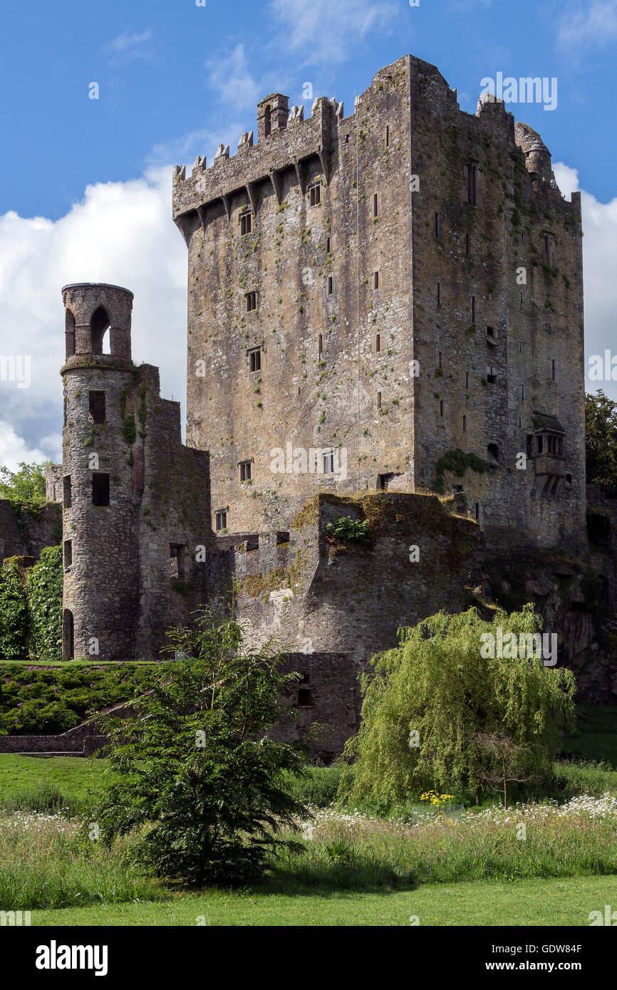 Blarney Castle is a medieval stronghold in Blarney, near Cork, Ireland. - Stock Image