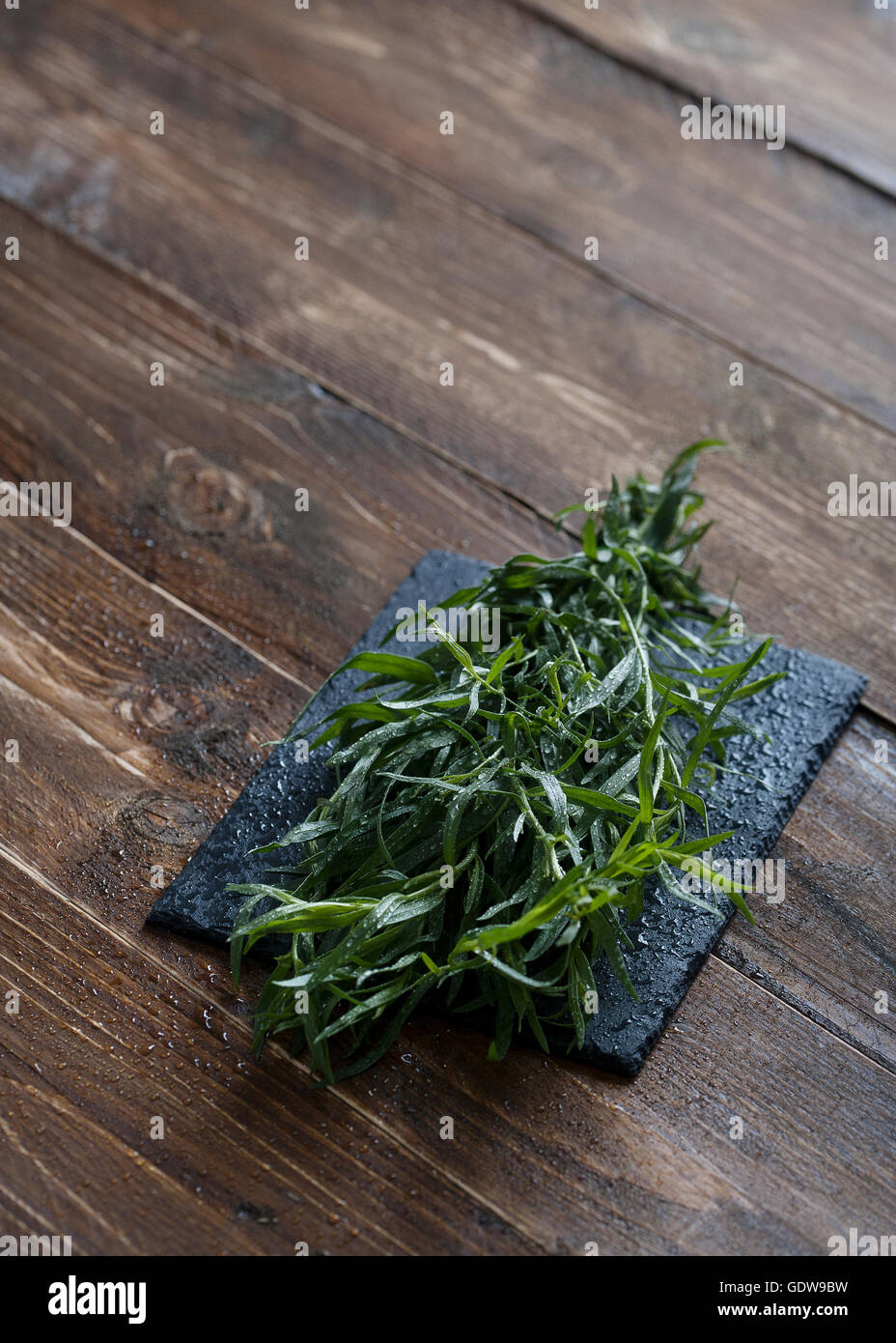 Fresh Tarragon on a table Stock Photo
