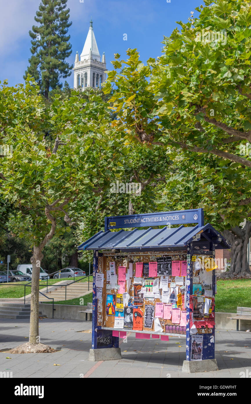Many flyers posted on a bulletin board kiosk with campanile tower in background on Berkeley campus - Stock Image