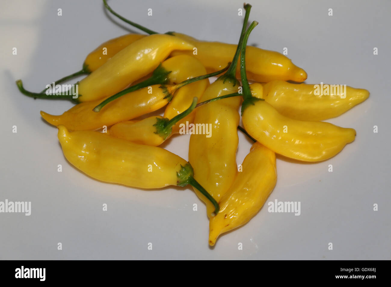 Fresh fruit of Chili  'Aji Limon' - Stock Image
