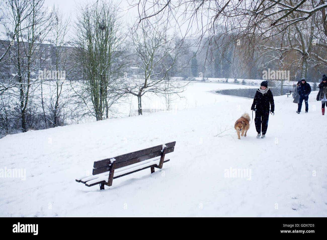Dog walking amidst a snow covered landscape on Hampstead Heath London, England UK. - Stock Image