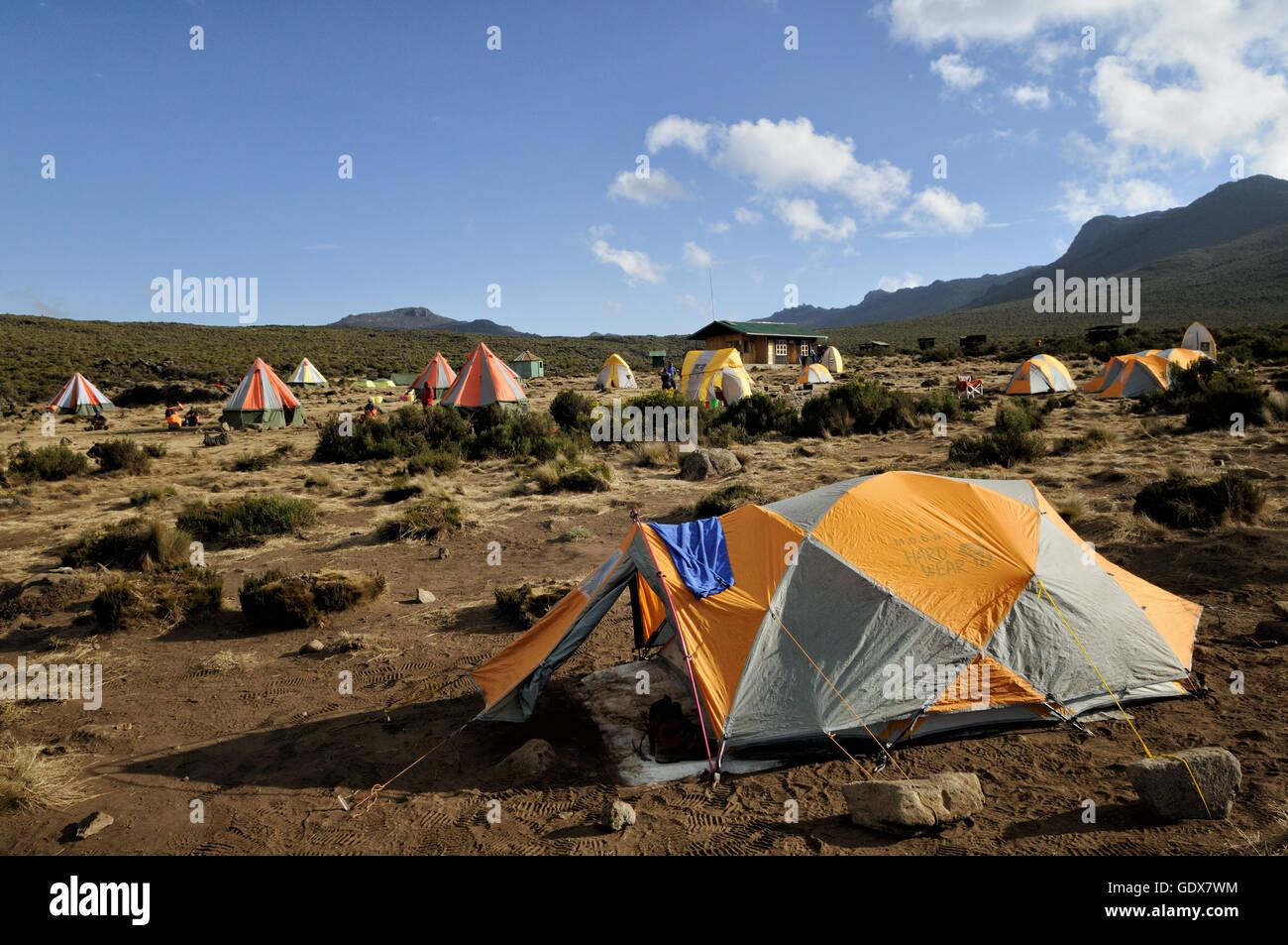 Tents at Shira 1 Camp on Lemosho route, Mount Kilimanjaro National Park, Tanzania Stock Photo