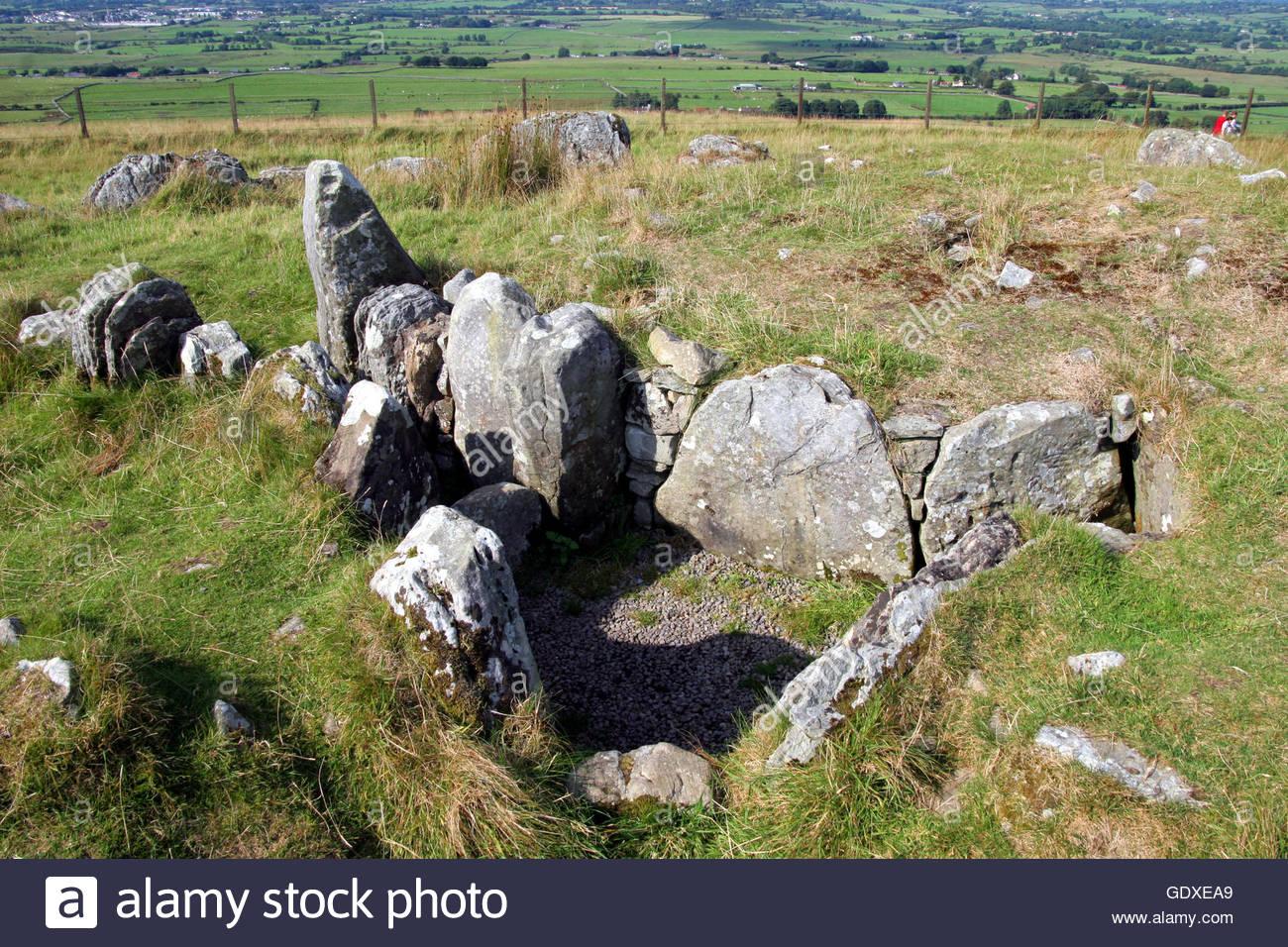 Single women seeking single men in Meath - Spark! - Irelands