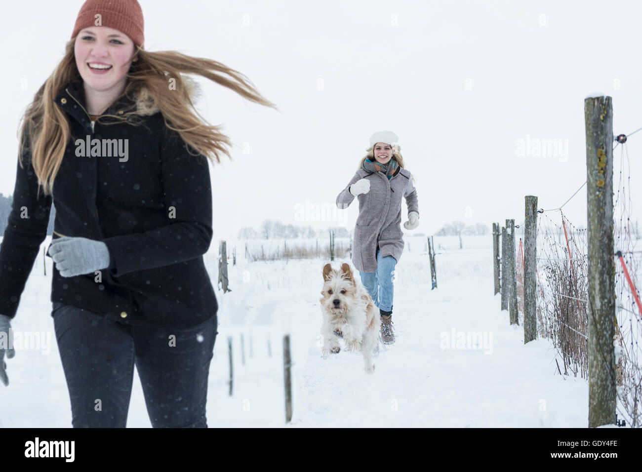 Teenage girls running with dog in snowfield, Bavaria, Germany - Stock Image
