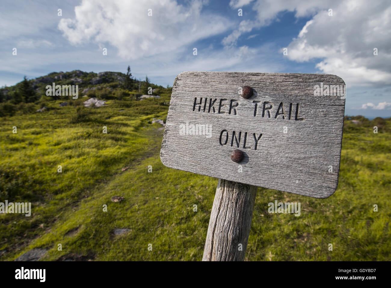 Wooden hiker trail only sign on the Appalachian Trail in Virginia. - Stock Image