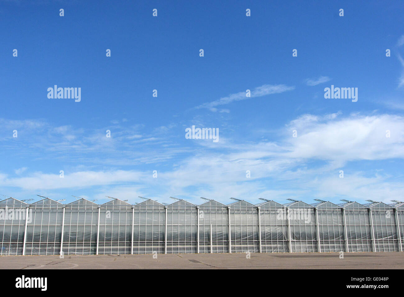 Tangmere nurseries, one of the largest greenhouses in Europe Stock Photo