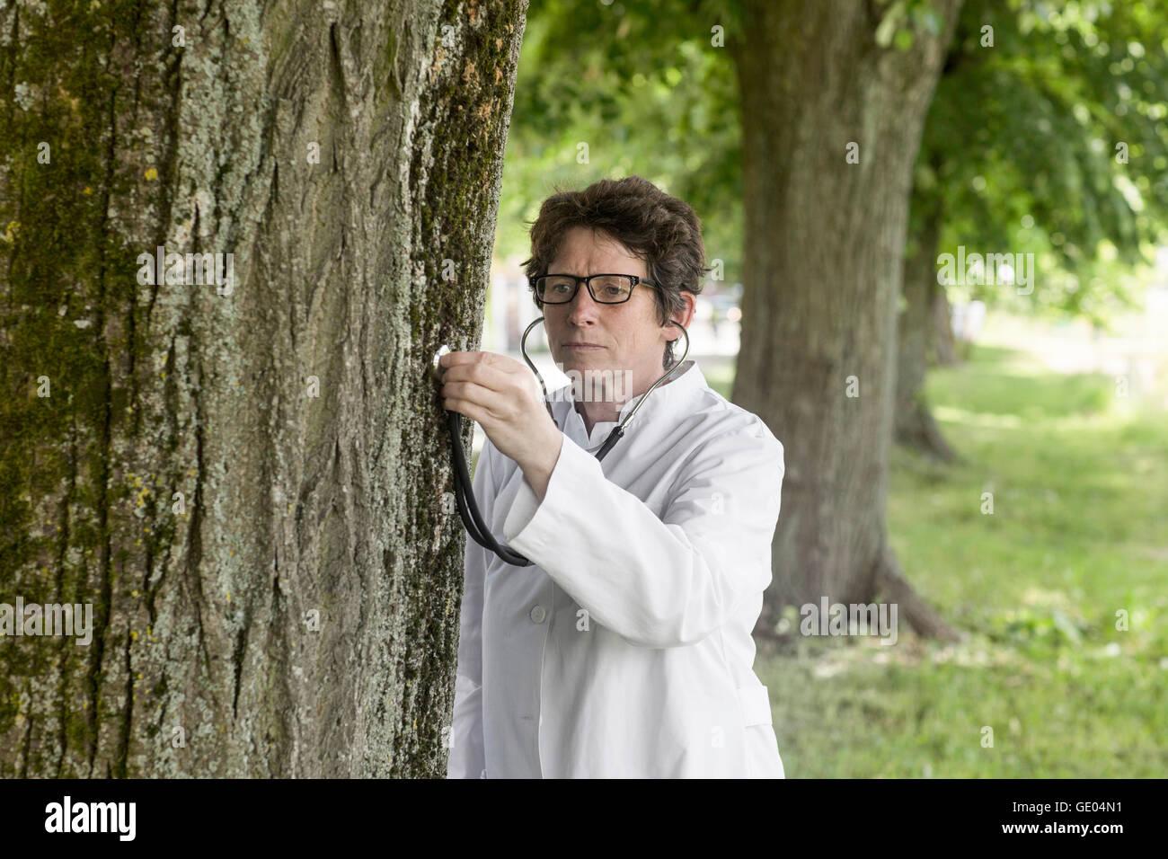 Female doctor checking the health of tree, Freiburg im Breisgau, Baden-Württemberg, Germany - Stock Image