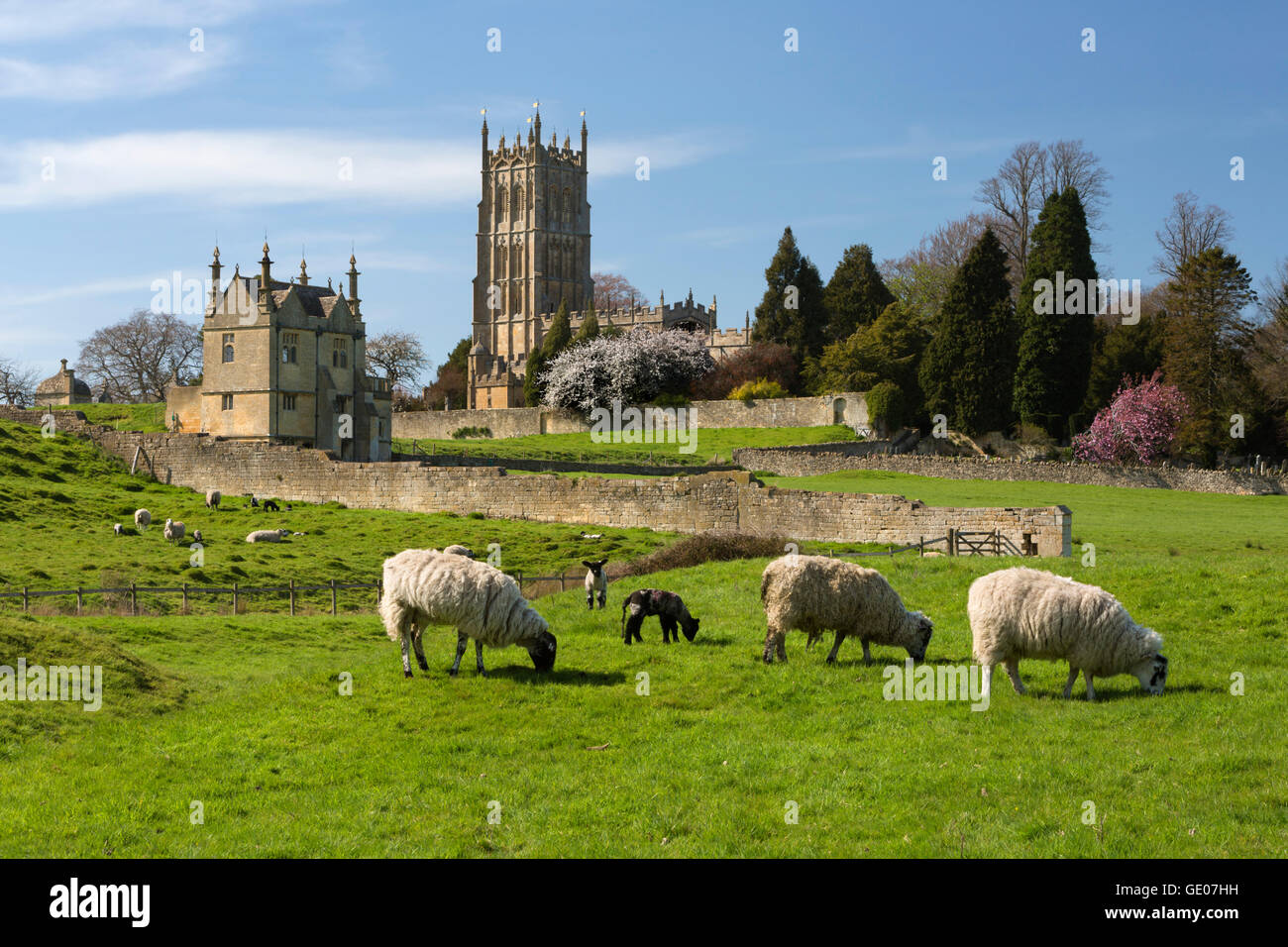 St James' Church and grazing sheep, Chipping Campden, Cotswolds, Gloucestershire, England, United Kingdom, Europe - Stock Image