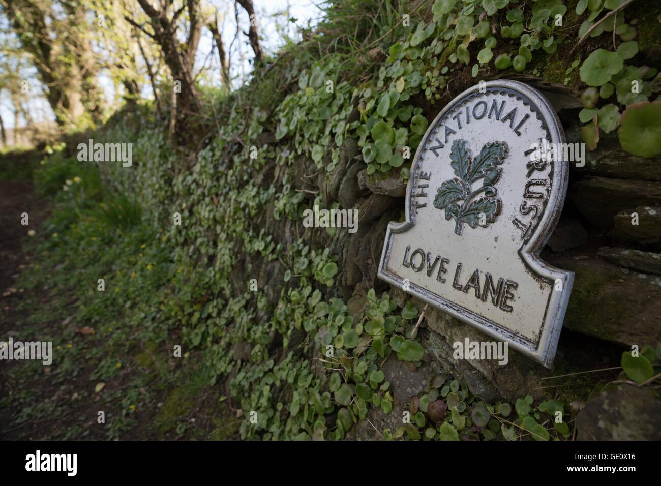 Love Lane country track, Fowey, Cornwall, England, United Kingdom, Europe - Stock Image
