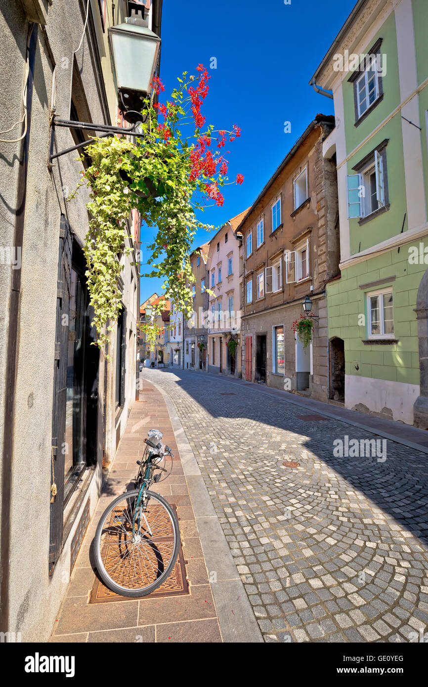 Romantic old street of Ljubljana, capital of Slovenia - Stock Image
