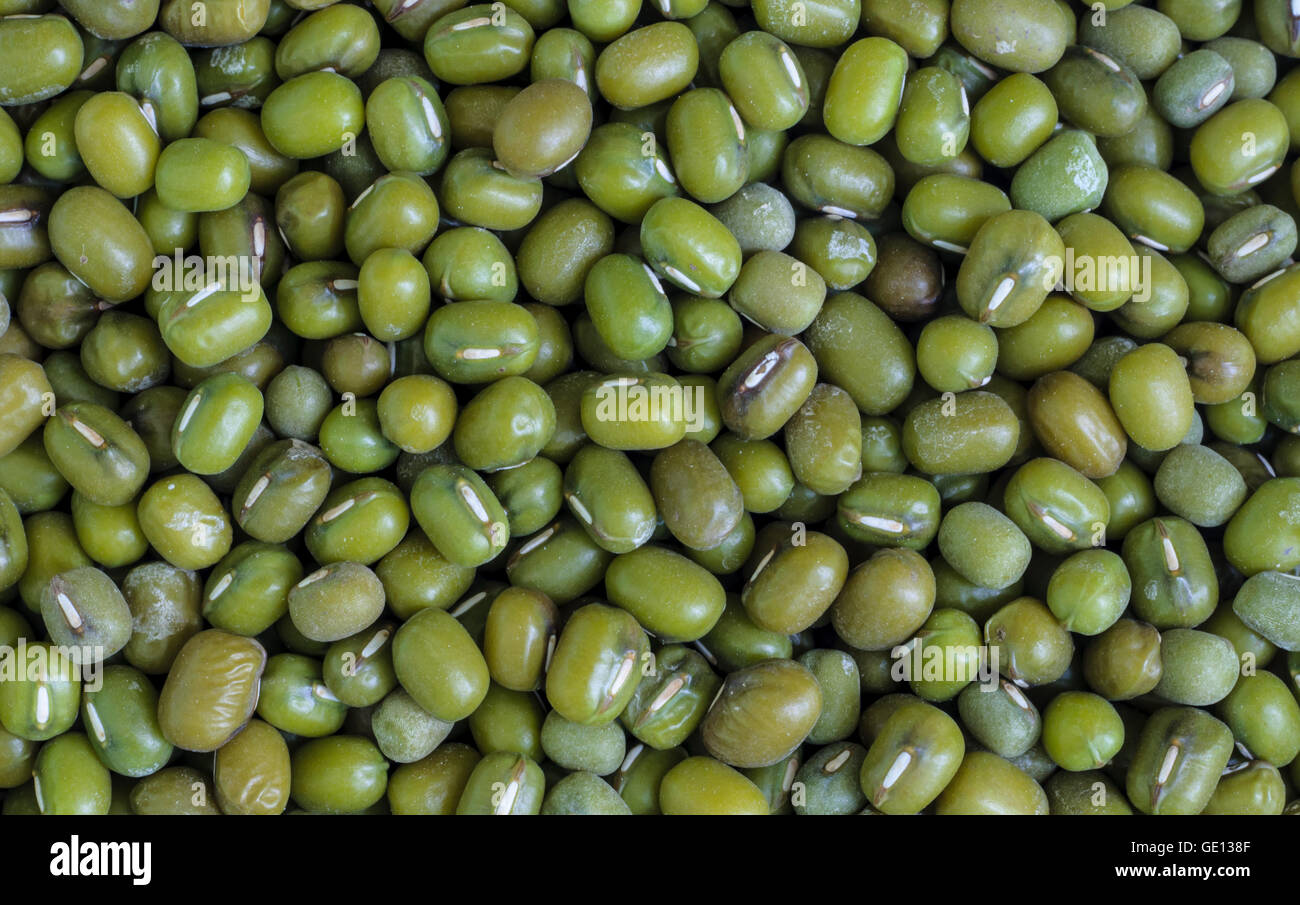 Closeup of green bean background. - Stock Image