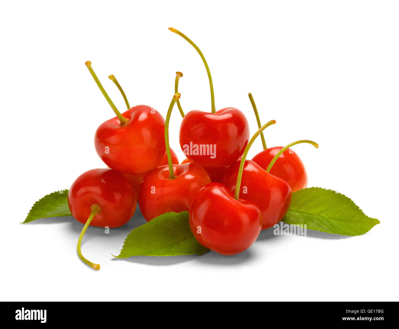 Pile of Cherries Isolated on White Background. - Stock Image