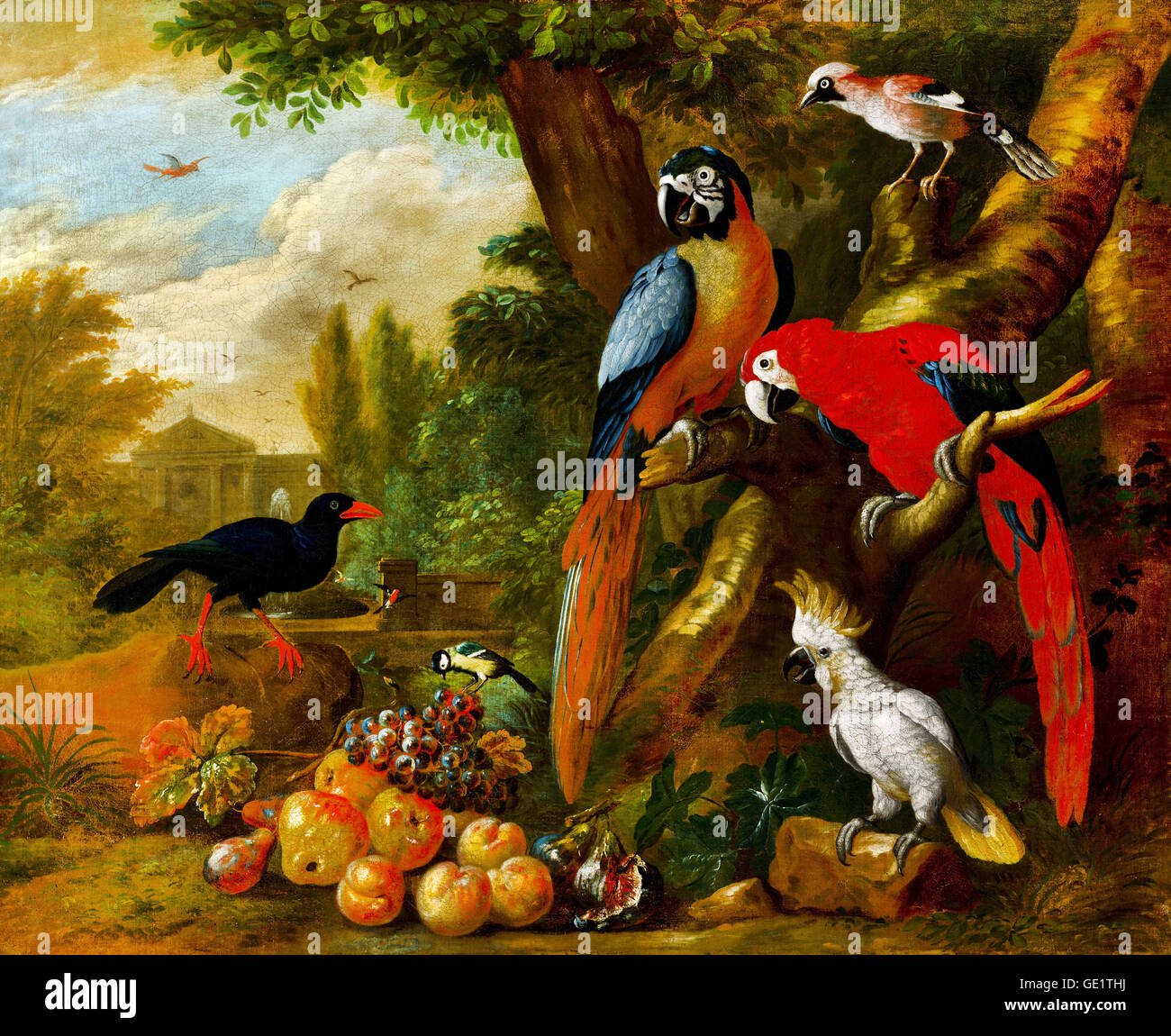 Jakob Bogdani, Two Macaws, a Cockatoo and a Jay, with Fruit 1710 Oil on canvas. Hungarian National Gallery, Budapest, - Stock Image