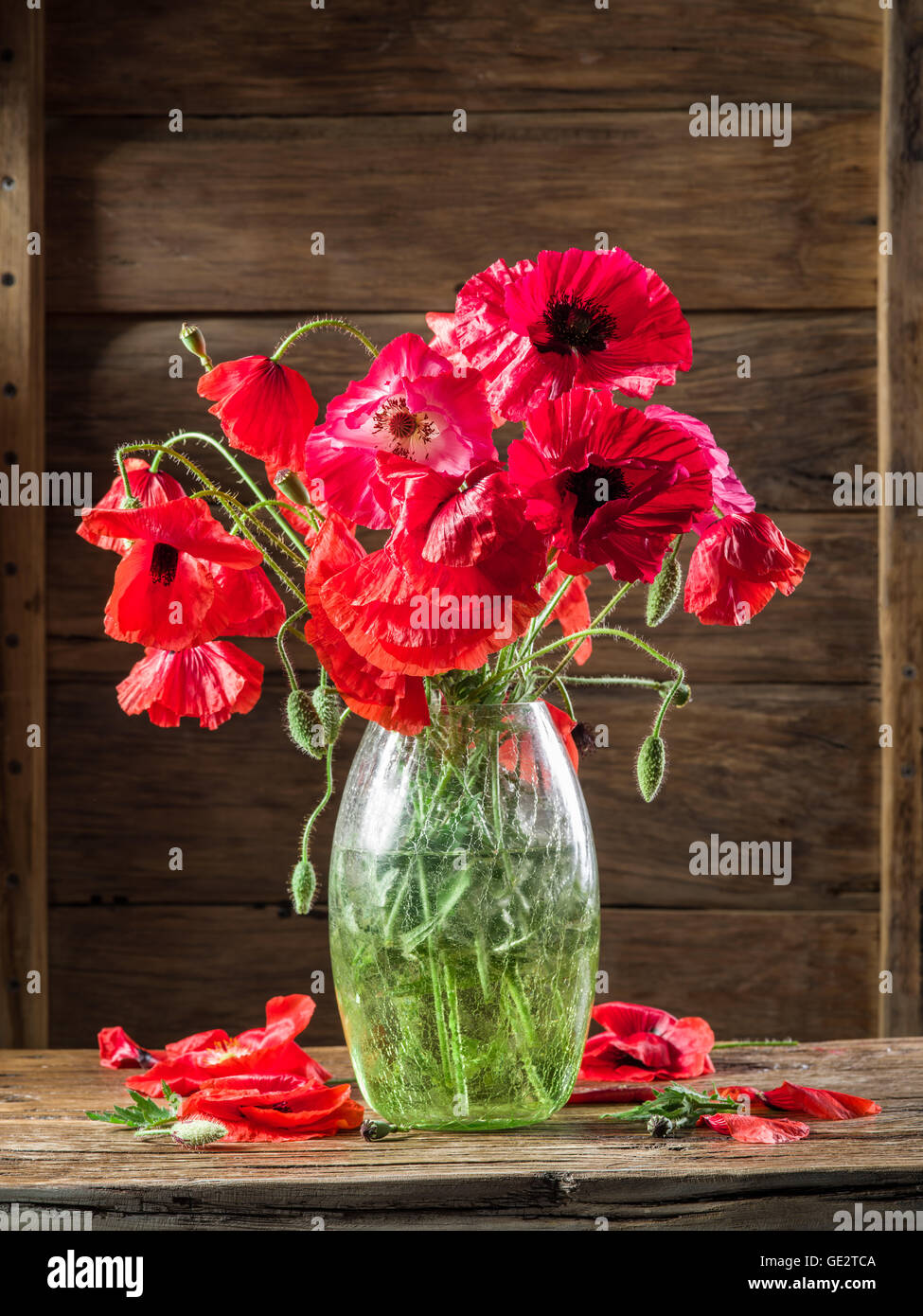 Bouquet Of Poppy Flowers In The Vase On The Wooden Table Stock Photo