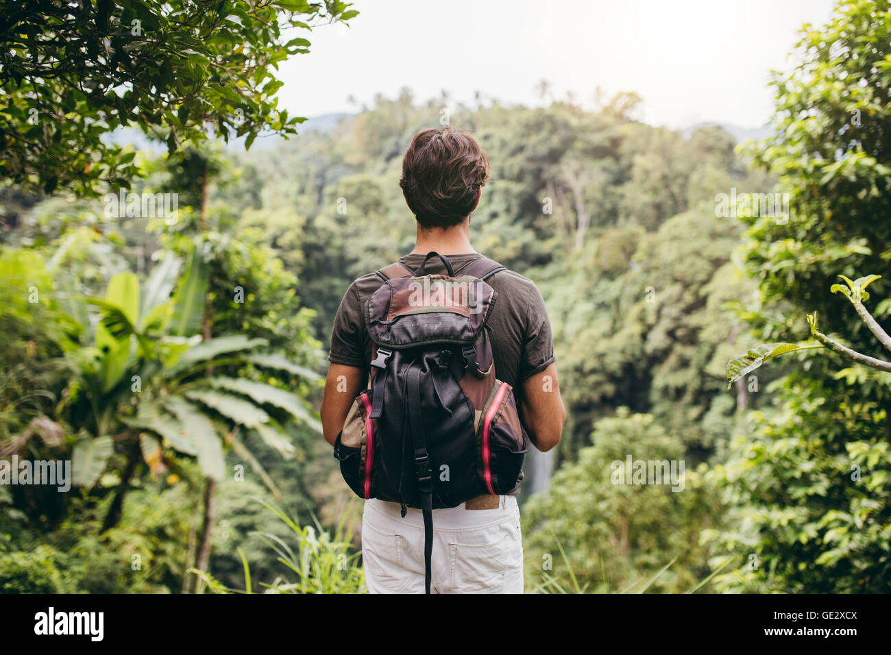 Rear view of man looking at waterfall. Male hiker standing in forest and viewing waterfall. - Stock Image