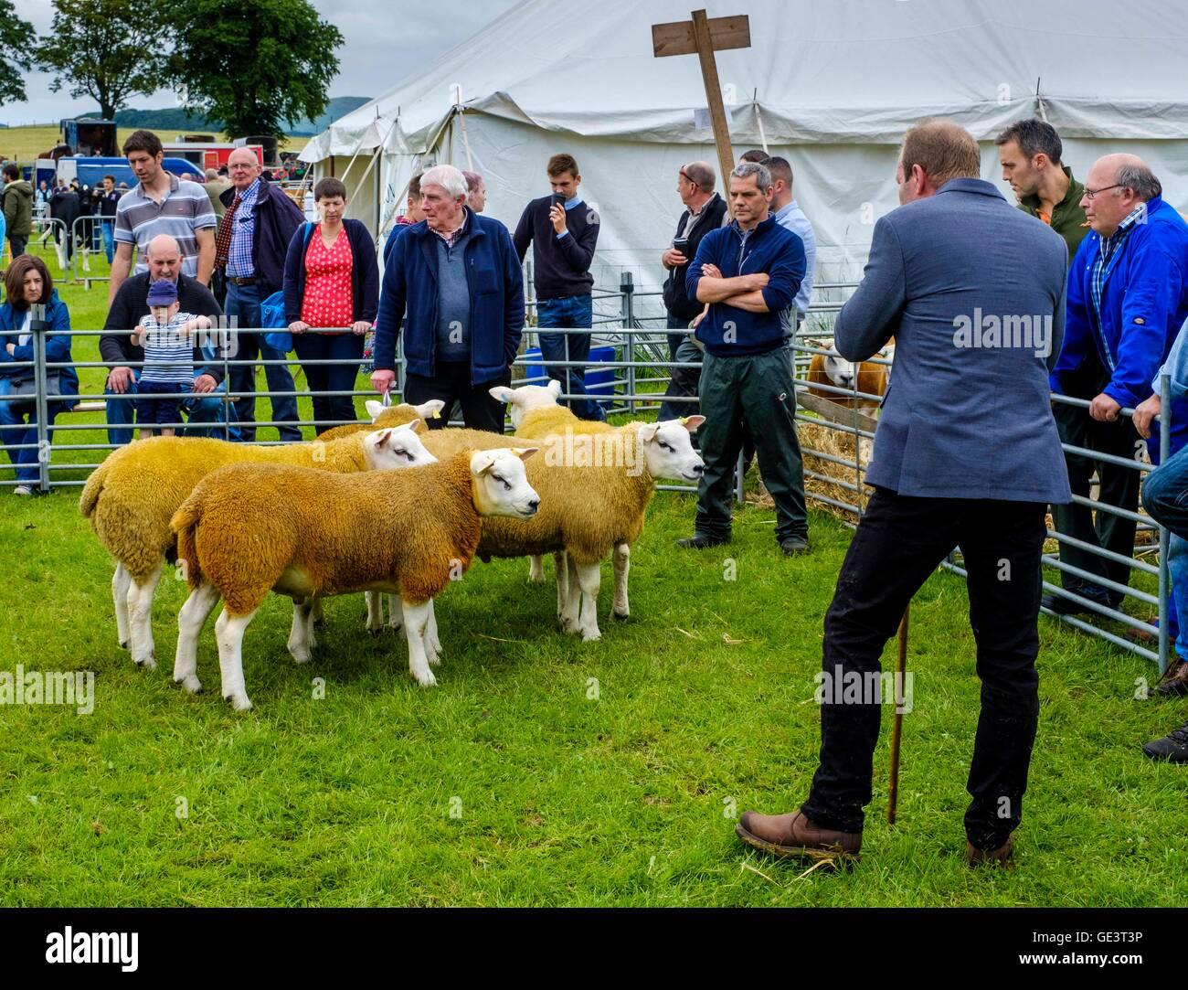 Biggar Agricultural Show - Biggar, South Lanarkshire - 23rd