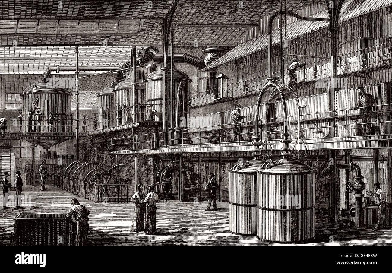 A sugar refinery, 19th century - Stock Image