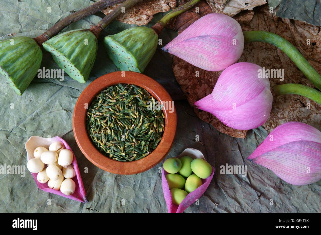 Collection Of Lotus Pink Lotus Flower Green Seed White Lotus Seed