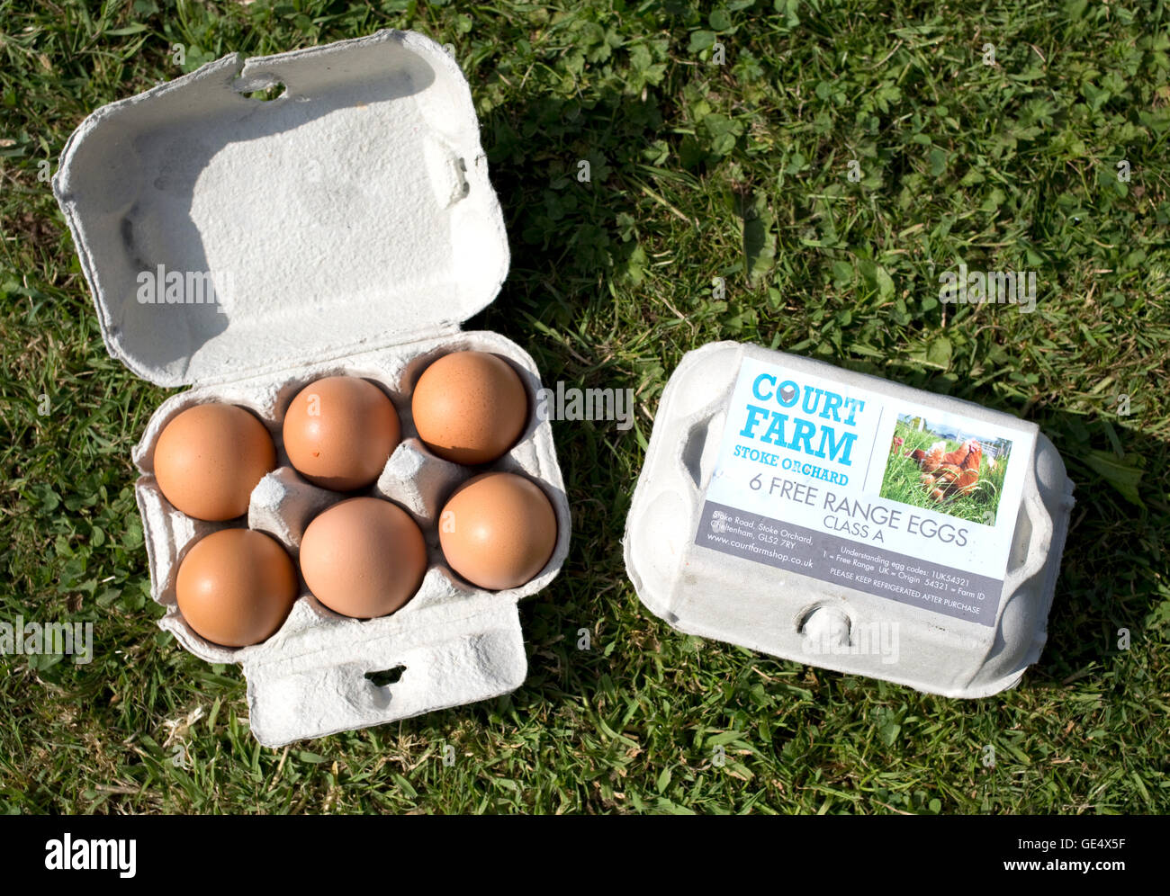 Two boxes of free range eggs Class A UK Stock Photo: 111975739 - Alamy