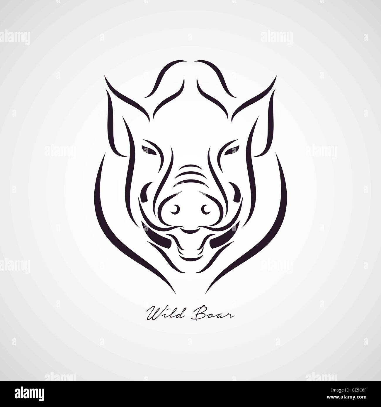 Wild Boar Logo Vector Stock Vector Art Illustration Vector Image