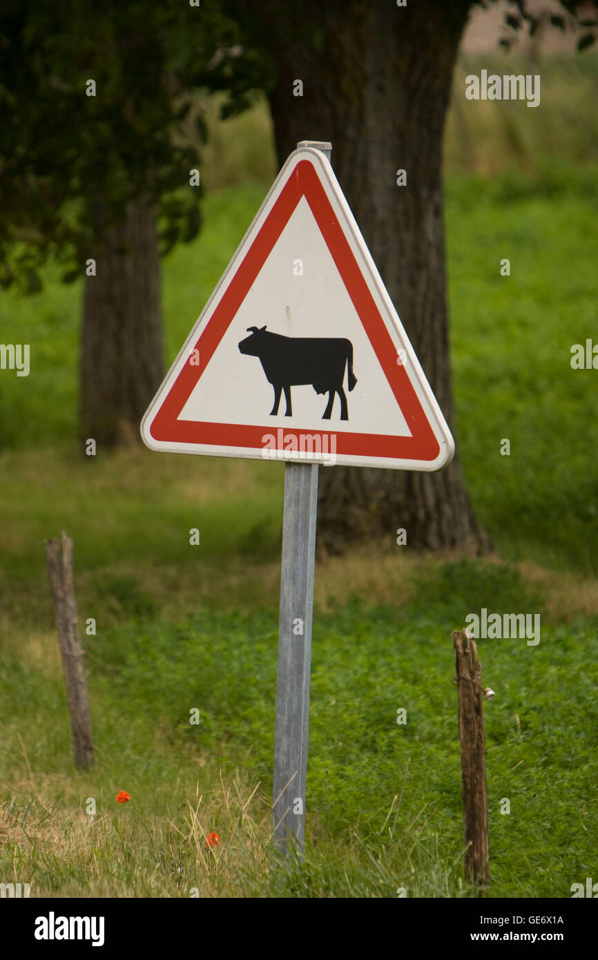 Cattle Pole Stock Photos Amp Cattle Pole Stock Images Alamy