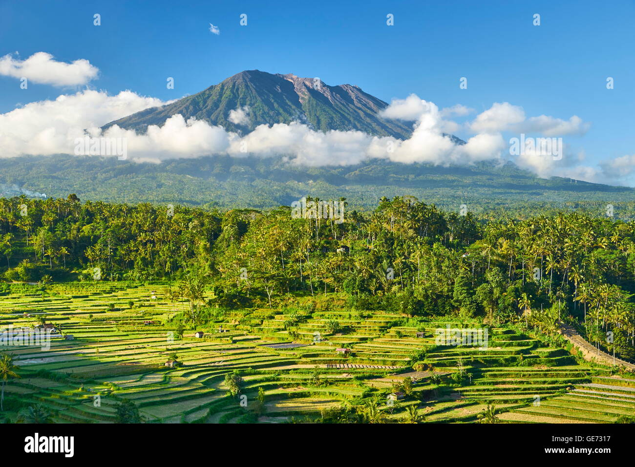 Gunung Agung Volcano and rice terraces landscape, Bali, Indonesia - Stock Image