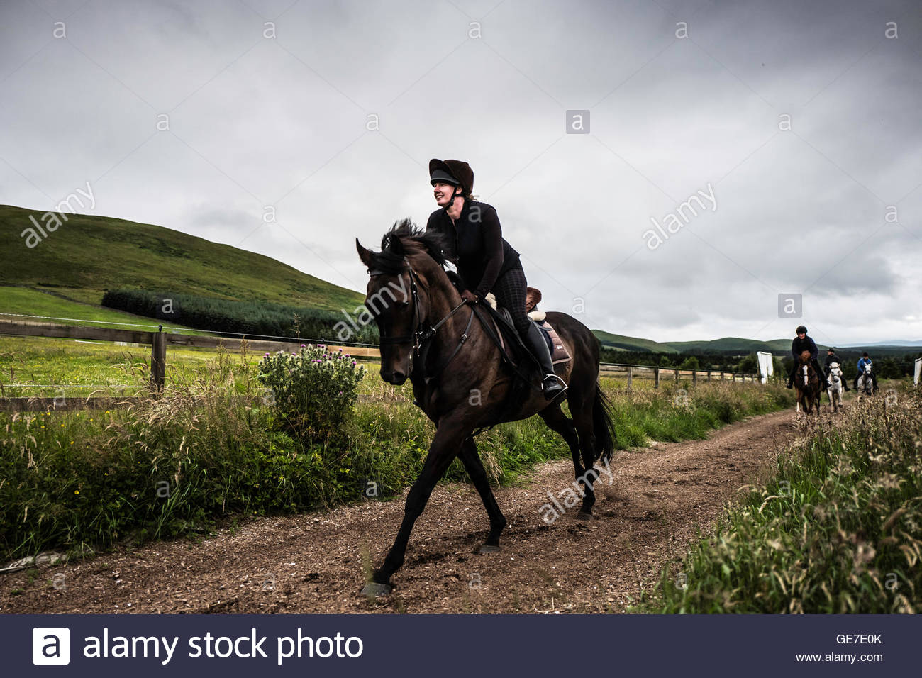 Strip End, Camptown, Jedburgh, Scottish Borders, UK. 22nd July 2016. Horses and ponies enjoy a gallop on the all - Stock Image