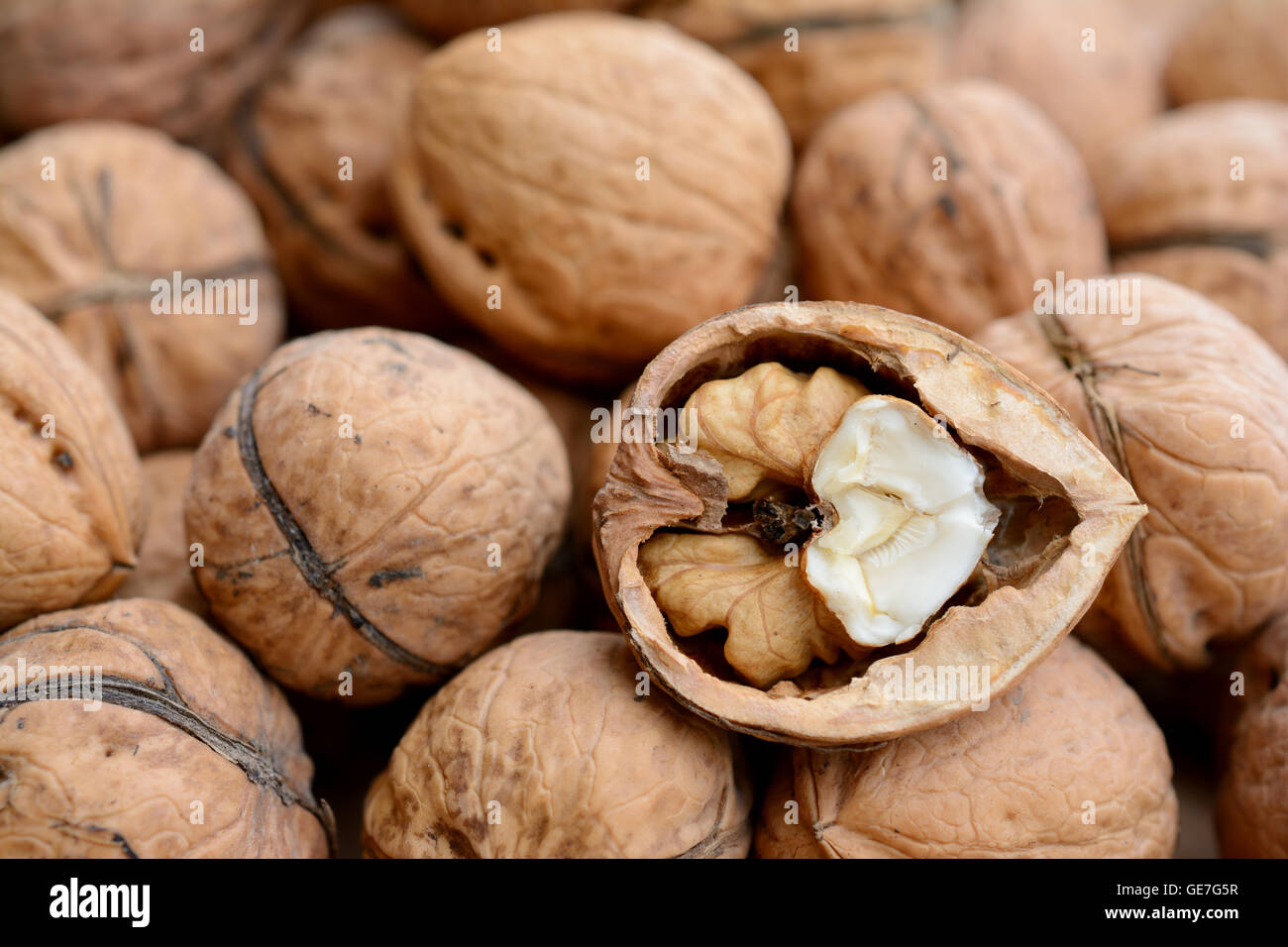 Brown cracked walnut closeup. Shallow depth of field. - Stock Image