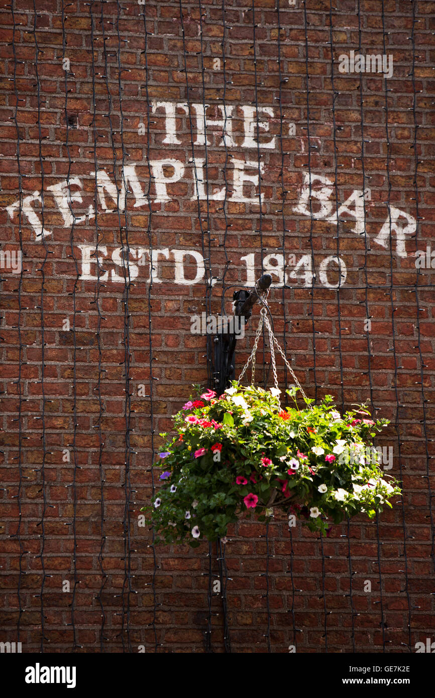 Ireland, Dublin, Temple Bar, floral hanging basket on gable wall - Stock Image