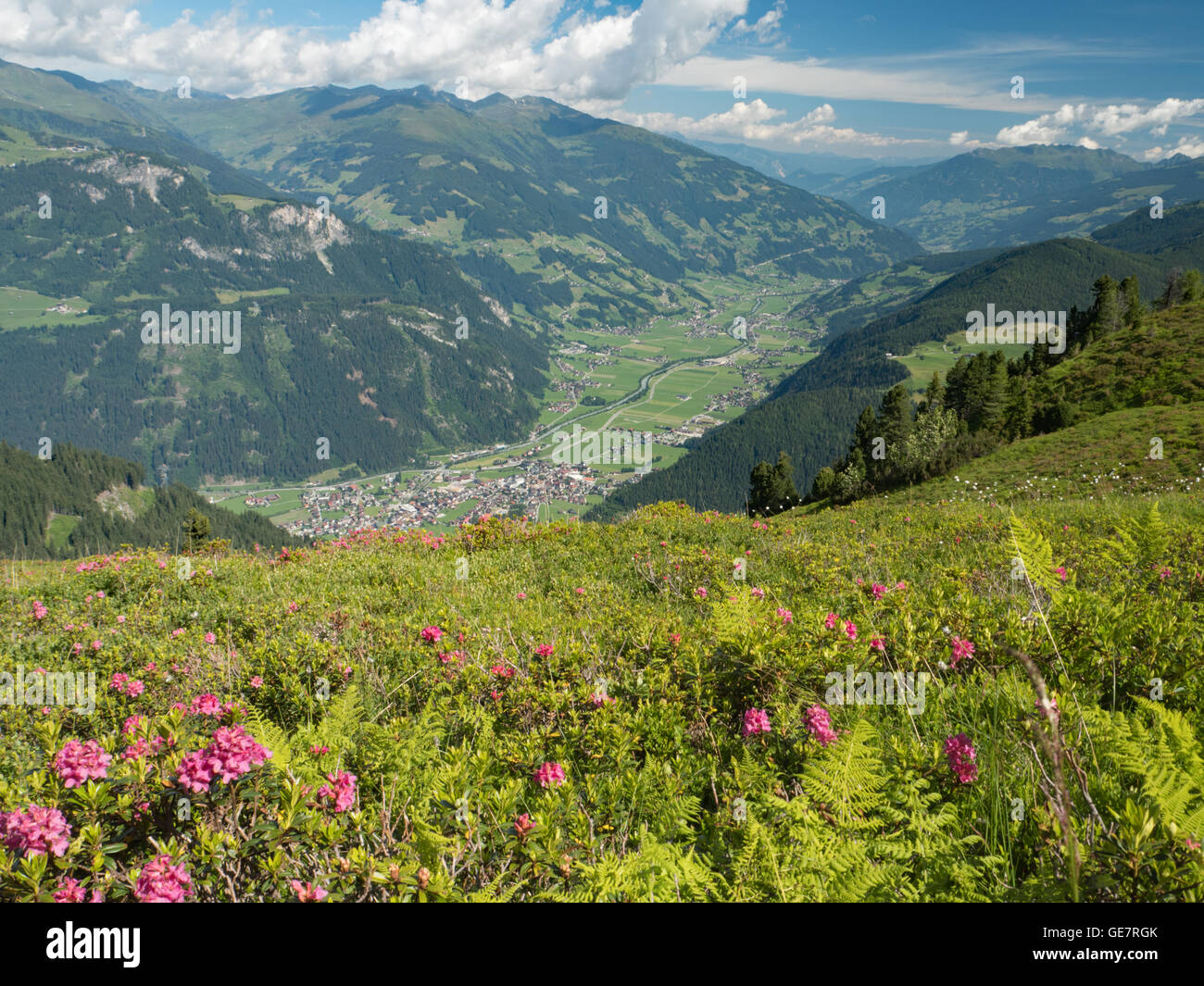 Mayrhofen and the Zillertal valley from Filzenkar - Stock Image