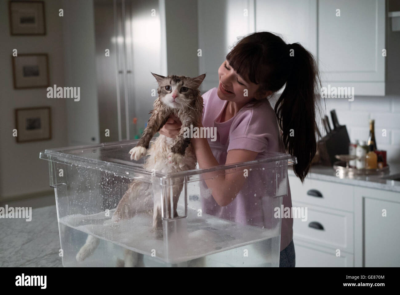 Nine Lives is an upcoming French comedy film directed by Barry Sonnenfeld and written by Dan Antoniazzi and Ben - Stock Image