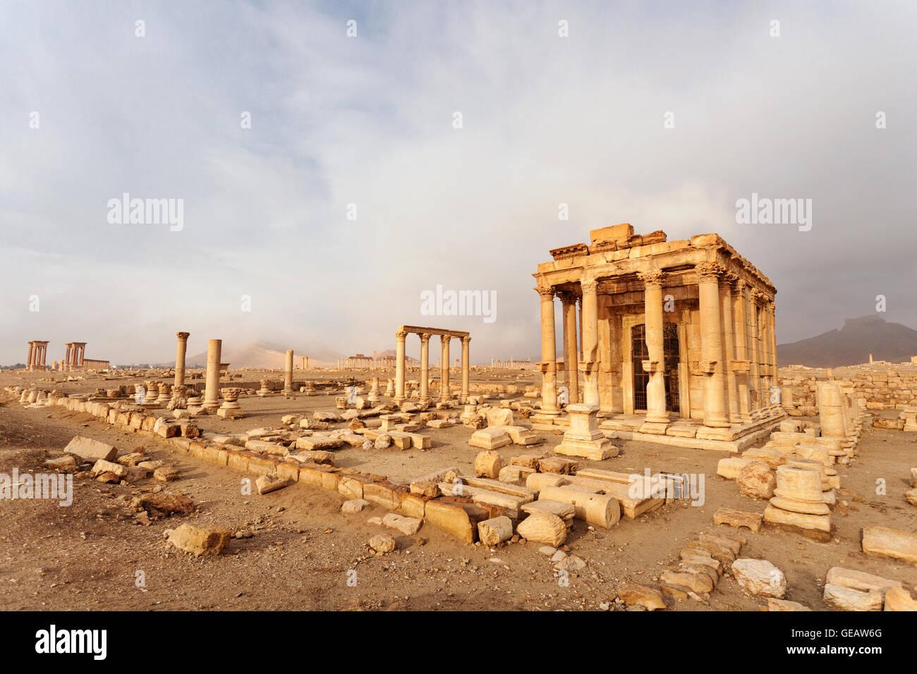 Syria, Homs, Palmyra, Palmyra - Stock Image