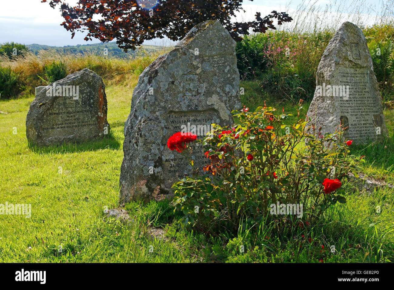 The famous & very wealthy Whitley family plot of four brothers grave stones in Buckland-in-the-moor graveyard . Stock Photo
