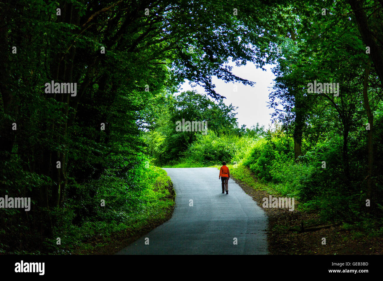 A single person in walking on a way in a dark forest into the light, - Stock Image