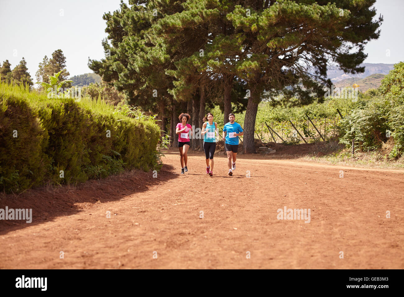 Three distance runners in a race on a gravel path with trees behind them wearing casual running clothes in the late - Stock Image