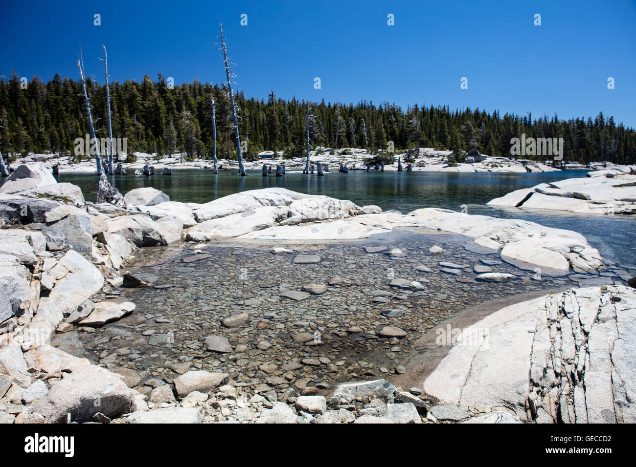 Freshwater fills a shallow glacial basin in the Desolation Wilderness. This area of the Sierra Nevada mountains - Stock Image