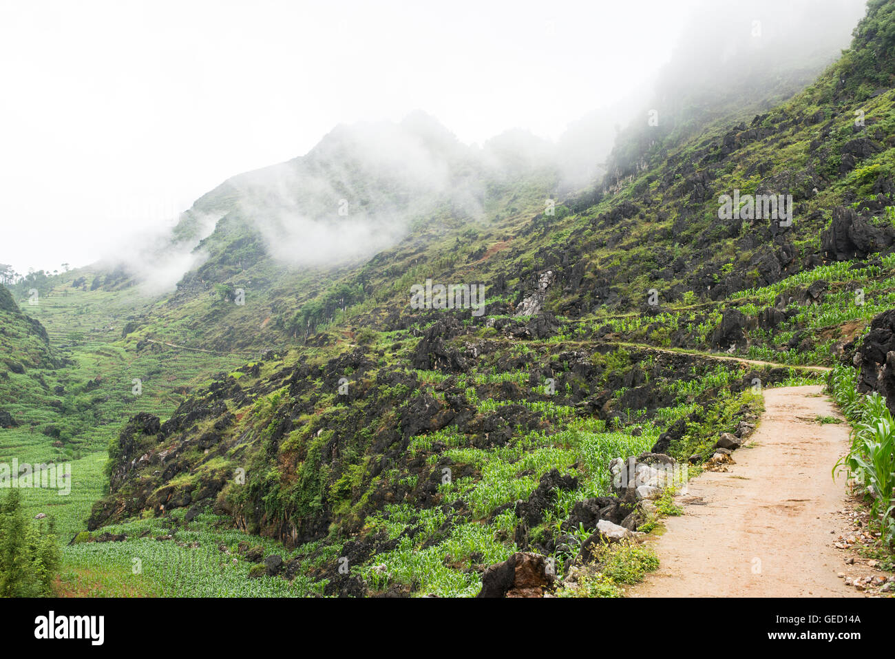 Remote path in Vietnamese countryside leading to a minority village in Dong Van, Ha Giang, North Vietnam - Stock Image