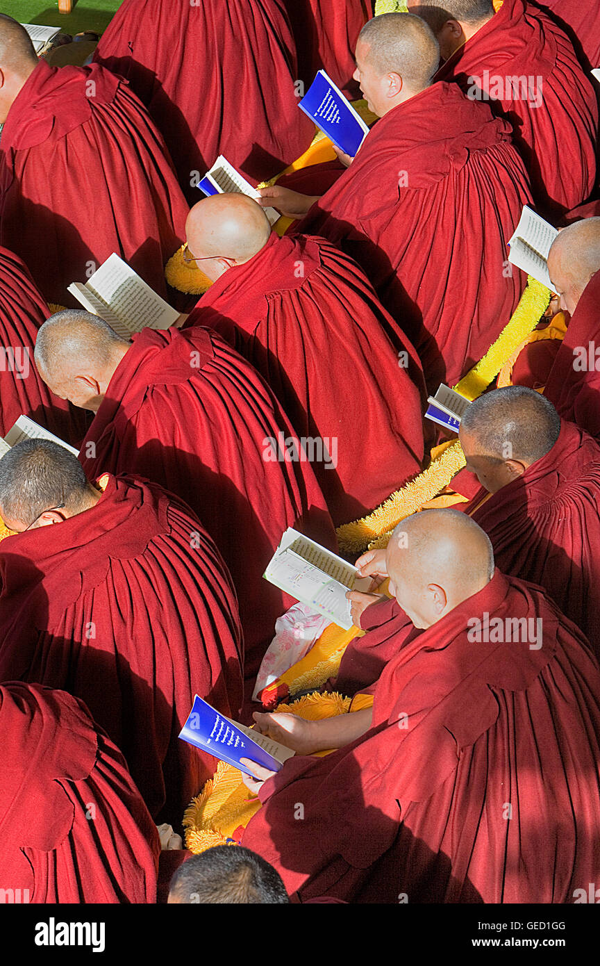 Puja,Monks praying during Losar new year, in Namgyal Monastery,in Tsuglagkhang complex. McLeod Ganj, Dharamsala, - Stock Image