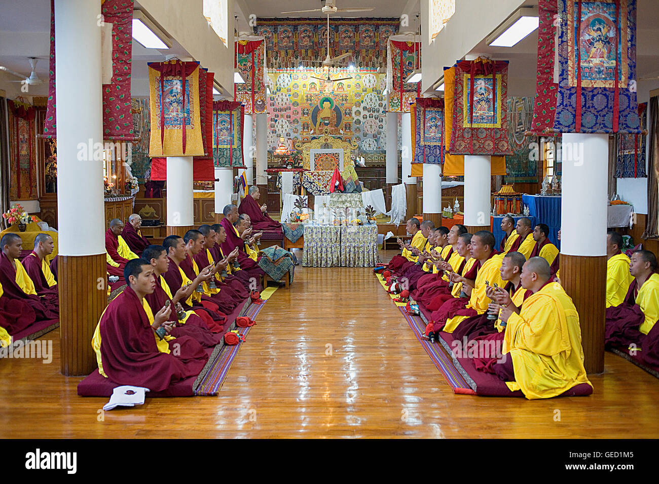 Puja,Monks praying, in Namgyal Monastery,in Tsuglagkhang complex. McLeod Ganj, Dharamsala, Himachal Pradesh state, - Stock Image