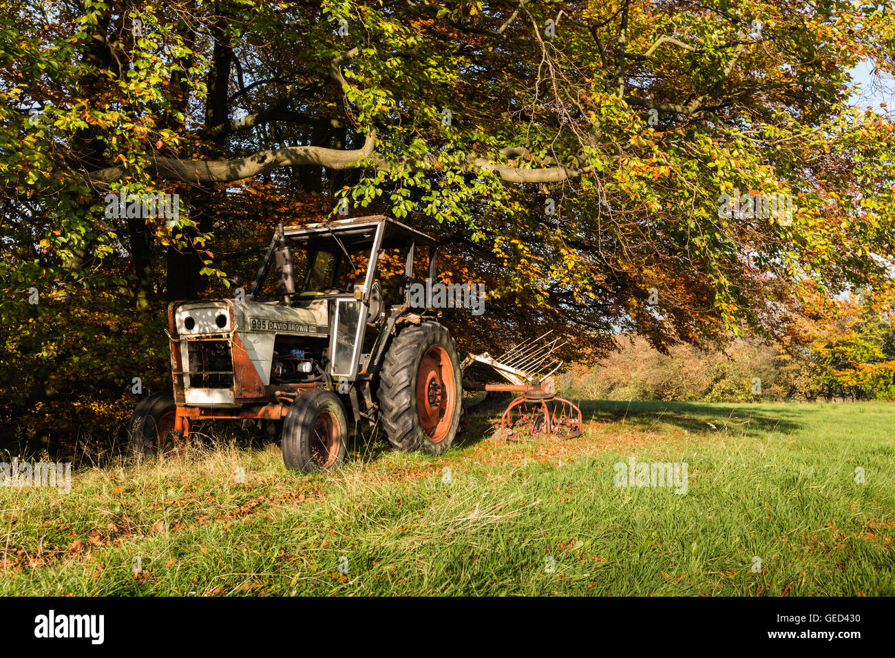 An old David Brown tractor with hay making implement is parked up under autumn trees, Carleton, Yorkshire, England, - Stock Image