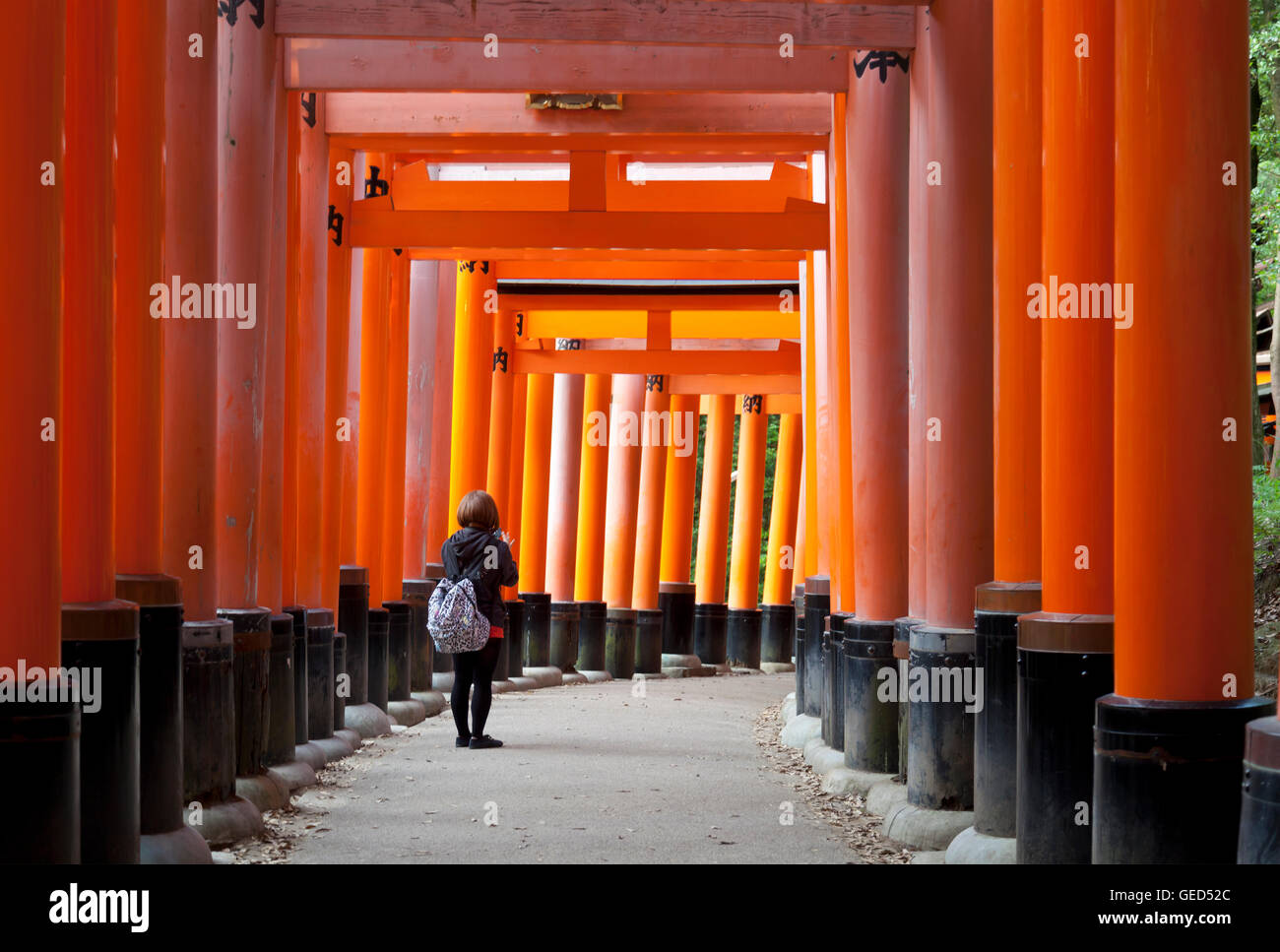 Fushimi Inari shrine, one of famous landmarks in Kyoto, Japan - Stock Image