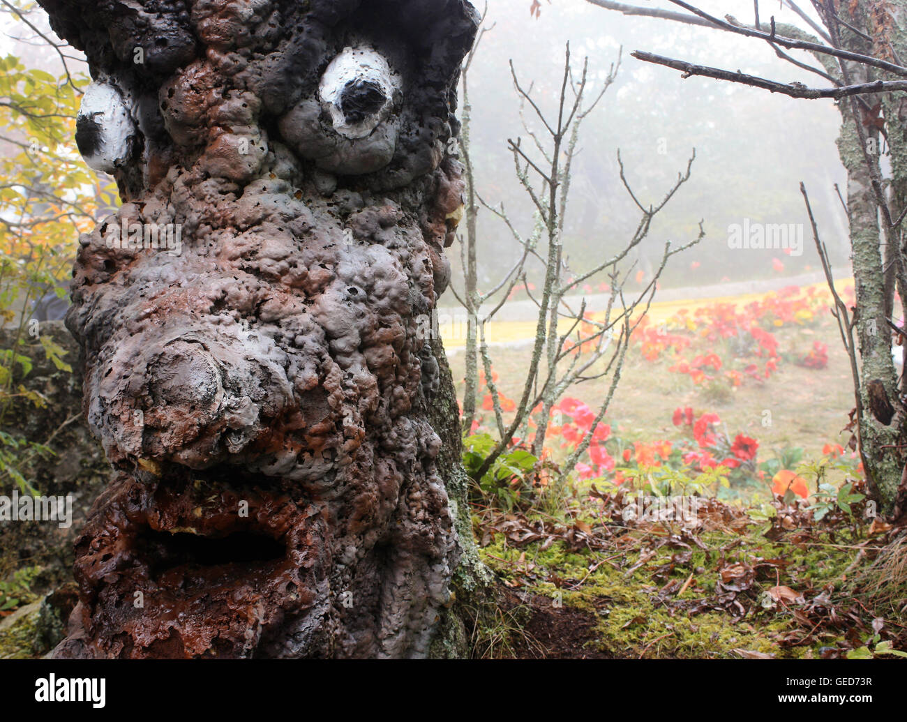 Fake tree with a face at the Land of Oz, Beech Mountain, NC - Stock Image